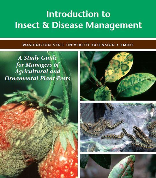 InsectDisease